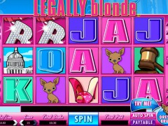 Legally Blond Slot - Fremantle Media